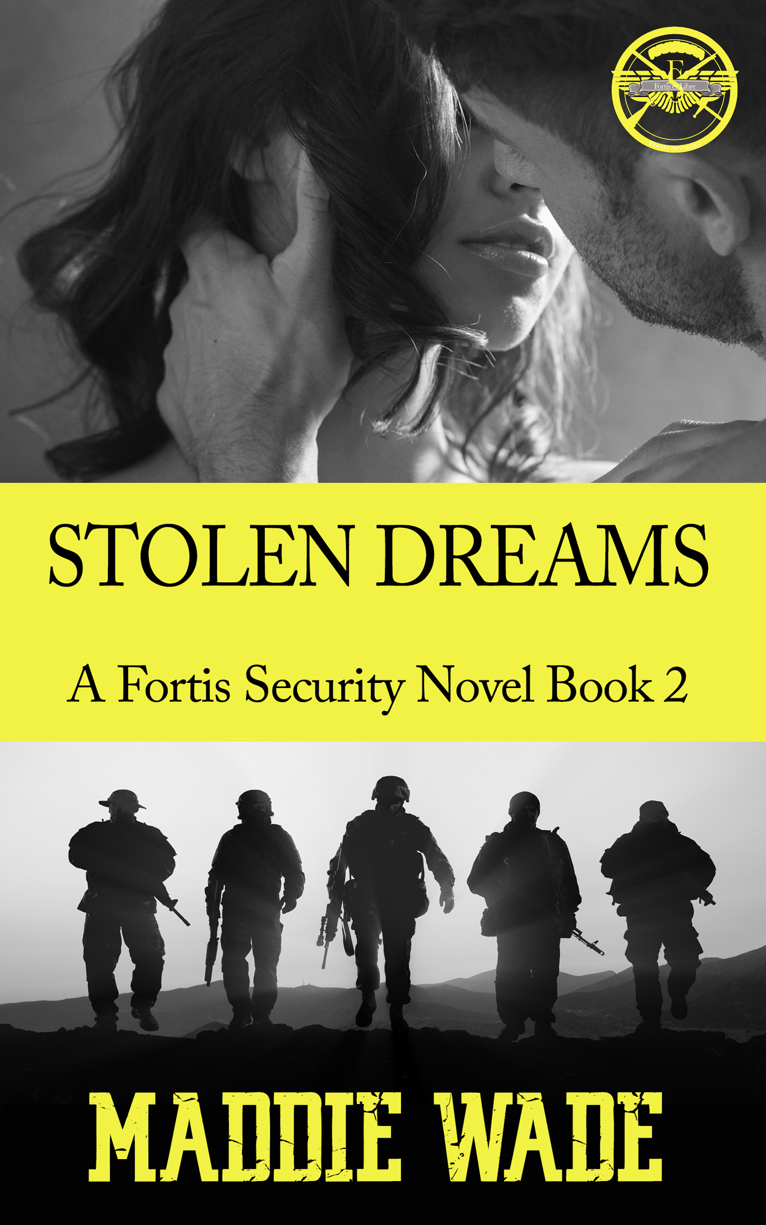 image of book cover named stolen dreams