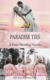 image of book cover named paradise ties