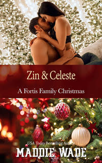 image of book cover named Zin and Celeste