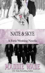 image of book cover named nate and skye